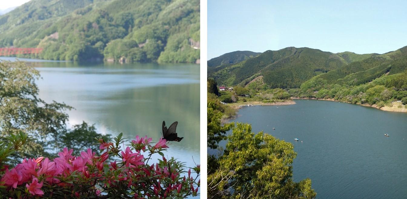 草木湖、梅田湖